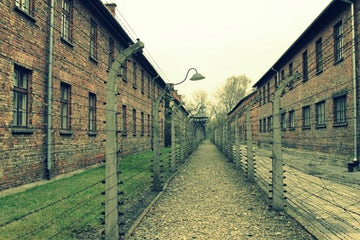 Op-ed by Irwin Cotler in Jerusalem Post | Auschwitz 75 years later: Universal lessons