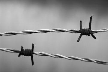 From Auschwitz-Birkenau to Berlin | Op-ed by Robert Goot