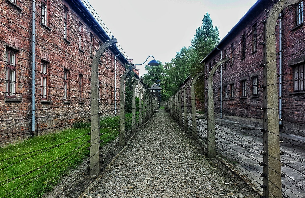 Return to Auschwitz and the courage of survivors, now and in the past   By Judit Illes