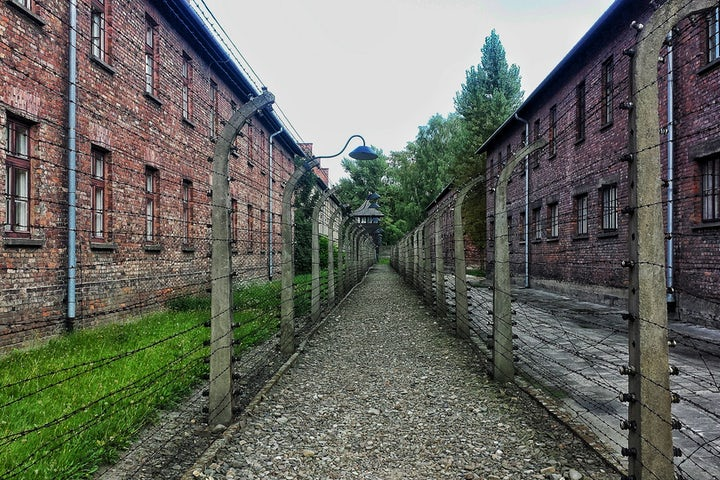 Return to Auschwitz and the courage of survivors, now and in the past | By Judit Illes