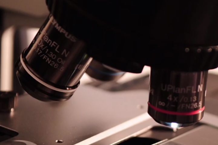 WATCH: Israel, in a world first, 3D prints a human heart